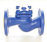 Клапан обратный подъемный чугунный фланцевый арт. 287 ZETKAMA Ду15 Ру16, фото 6