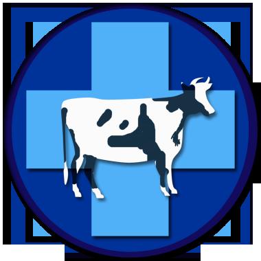 Получение Ветеринарных сертификатов
