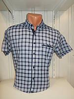 Мужская рубашка с коротким рукавом (S–2XL) — купить оптом в Украине Одесса 7км прямой поставщик склад