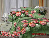 Евро-макси набор постельного белья 240*220 из Полиэстера №853481 KRISPOL™