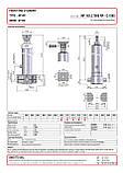 Гидроцилиндр с шарниром и кронштейном Binotto MF 165-5-7800 RP (фронтальный), фото 2