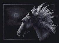 """Набор для вышивки крестом """"Panna"""" Лунный конь Ж-0527"""