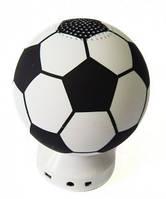 Портативный динамик с FM-радио/USB/MicroSD в виде футбольного мяча, музыкальная колонка футбольный мяч