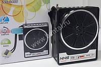 Радио-колонка NS-048