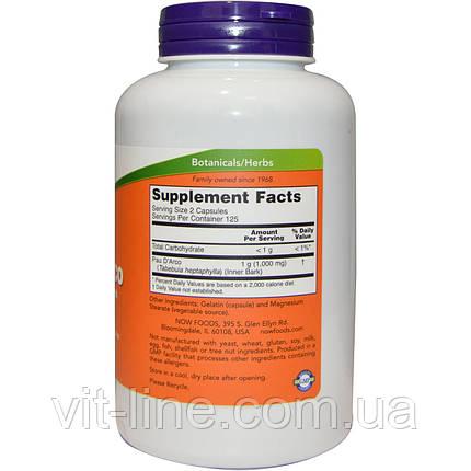 Now Foods, Кора муравьиного дерева, 500 мг, 250 капсул, фото 2