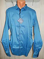 Рубашка мужская  Enisse длинный рукав, батал, стрейч, мелкий узор, заклепки 004 \ купить рубашку