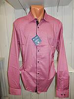 Рубашка мужская  Enisse длинный рукав, батал, стрейч, мелкий узор, заклепки 015 \ купить рубашку