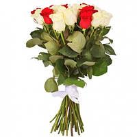 Букет красно-белых роз