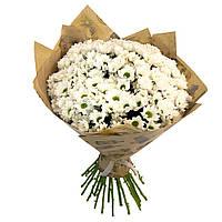 Букет из 19 белых хризантем