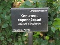 Таблички для растений теплица композит