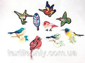 Нашивка Птичка на ветке синяя 100x93мм, фото 3