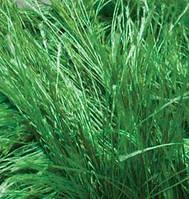Турецкая пряжа для вязания нитки Alize  DECOFUR (Декафур) травка 595 зеленый