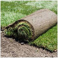 Мы оказываем услуги по укладке рулонного газона!!!!