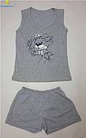 Комплект подростковый шорты с майкой, размеры от 34 до 44, Украина Серый