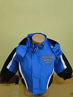 Куртка детская с капюшоном ТМ Lupilu 65226