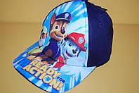 Бейсболка Щенячий патруль темно-синяя Код 19055 Размеры 52-54 см