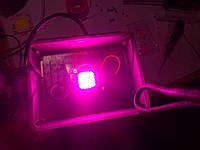 Фито прожектор 20w для растений фитолампа fito