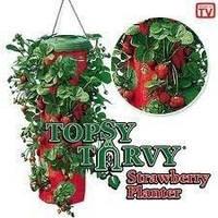 Topsy turvy strawberry planter – выращивание клубники в домашних условиях