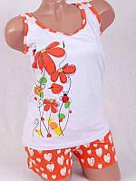 Яркий летний костюм майка+шорты 3159