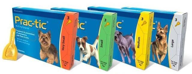 Prac-tic (Практик) капли для собак весом от 2 до 4,5 кг (за 1 пипетку)