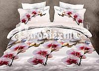 """Комплект постельного белья """"Ранфорс"""" семейный размер  079"""