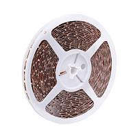 Лента LED HOROZ ELECTRIC NIL 24W/5м 12V 4,8Lm/1led IP20 28x3 60led/м 6400K