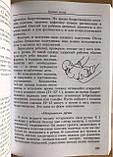 Практическая энциклопедия молодой православной мамы. Первый год жизни вашего ребенка, фото 3