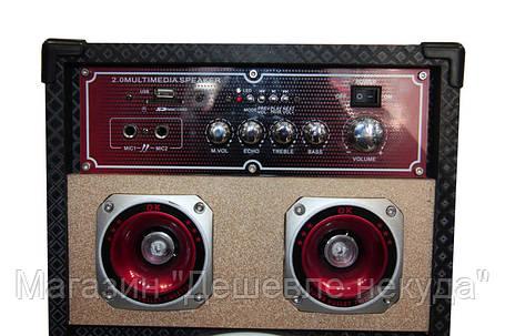Аккустическая система USBFM-198D-DT!Опт, фото 2