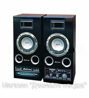 Акустическая система USBFM-51DC!Опт, фото 2
