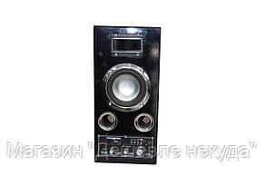 Акустическая система USBFM-51DC!Опт, фото 3