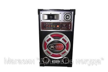 Акустическая система USBFM-610!Опт, фото 2