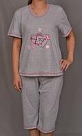 Пижама женская для дома футболка с бриджами хлопковая комплект домашний Украина