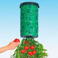 Приспособление для выращивания овощей(помидоры) корнем вверх Topsy Turvy, проращиватель