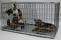 Клетка вольер для собак, котов Дуэт, 100х50х55 см