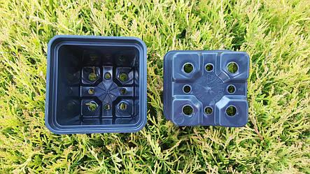 Горшок для рассады 0,3л (8x8x8см),квадратный, черный,400шт\уп, фото 2