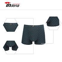 Чоловічі боксери стрейчеві марка «INDENA» АРТ.75002, фото 2