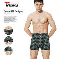 Мужские боксеры стрейчевые марка «INDENA»  АРТ.65094, фото 2