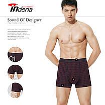 Мужские боксеры стрейчевые марка «INDENA»  АРТ.65095, фото 2
