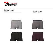 Мужские боксеры стрейчевые марка «INDENA»  АРТ.65095, фото 3