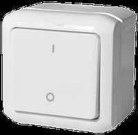 Выключатель двухполюсный IP44 Legrand Forix Белый (782366)