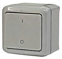 Выключатель двухполюсный IP44 Legrand Forix Серый (782386)