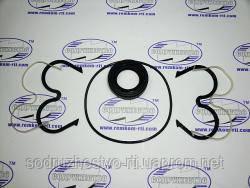 Ремкомплект НШ-32М-3 / НШ-50М-3 MASTER насос шестеренчатый (с пластмассовой обоймой) до 2010 г. МТЗ-100, ДТ-75