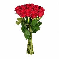 Букет 19 красных роза