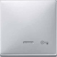 Клавиша с окошком для световой индикации и пиктограммой Merten Алюминий (MTN437660)