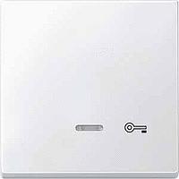 Клавиша с окошком для световой индикации и пиктограммой Merten Полярно-Белый (MTN437619)