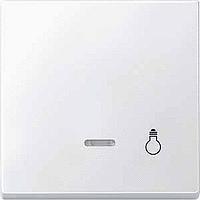 Клавиша с окошком для световой индикации и пиктограммой Merten Полярно-Белый (MTN437919)