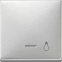 Клавиши с окошком для индикации и пиктограммой Merten Сталь (MTN437946)