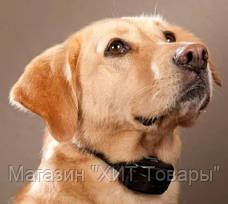 Ошейник Анти-лай A0-881 Anti-Barking Controller, фото 3