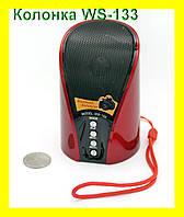 Беспроводная Bluetooth колонка WSTER WS-133 с USB, FM, MicroSD и AUX