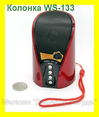 Беспроводная Bluetooth колонка WSTER WS-133 с USB, FM, MicroSD и AUX, фото 2